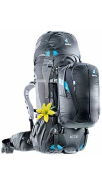 Deuter Quantum Female  Pack